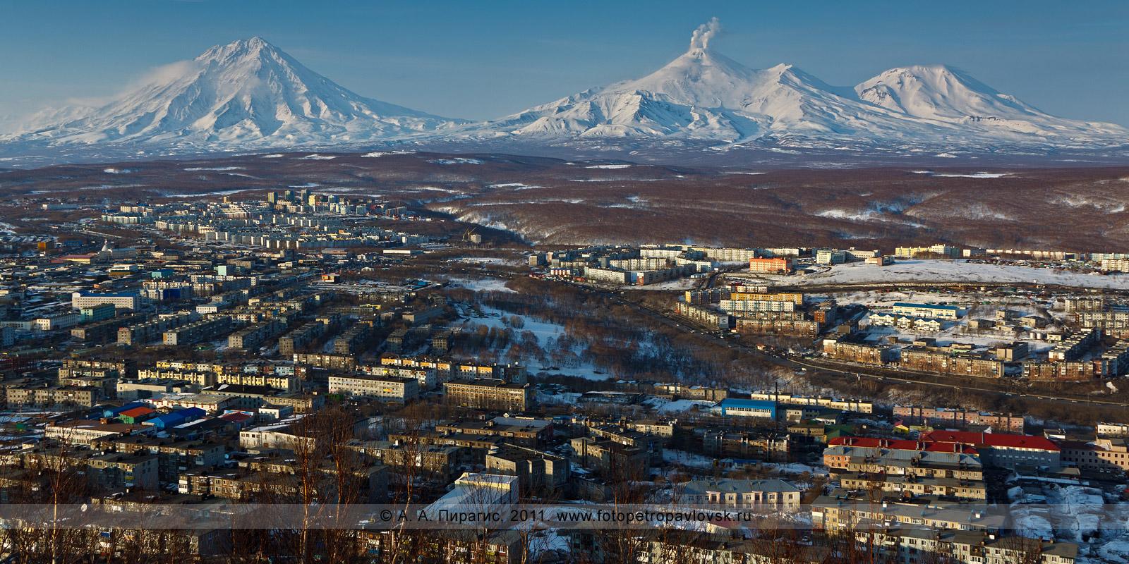Путаны в петропавловске камчатском 13 фотография